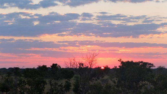 Sunset in Hwange National Park (Photo: DN)