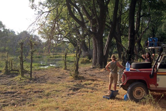 Pleasant spot for lunch! (Croc 30 ft away) (Photo: RWH)